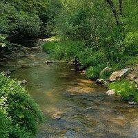 Hillsville Creek1200